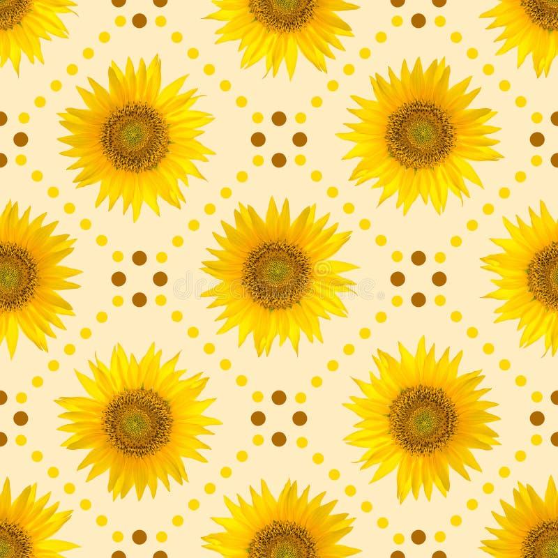 无缝的样式用大明亮的向日葵和棕色小点在黄色背景 免版税库存照片