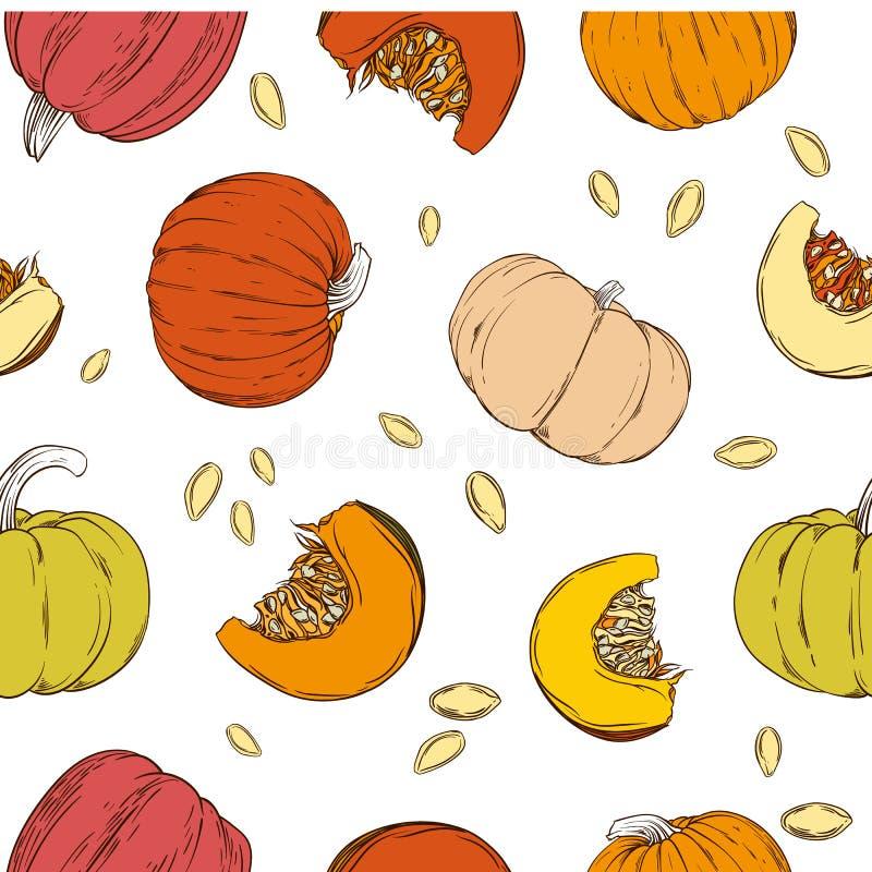 无缝的样式用手拉的南瓜和种子 库存例证