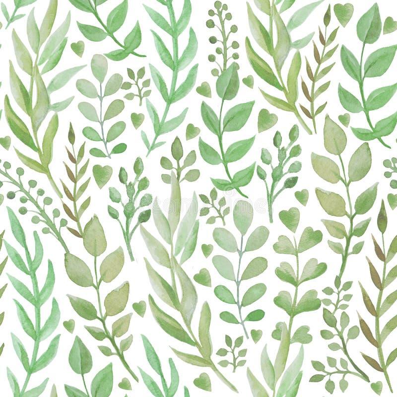无缝的样式用手拉的水彩草本 库存例证