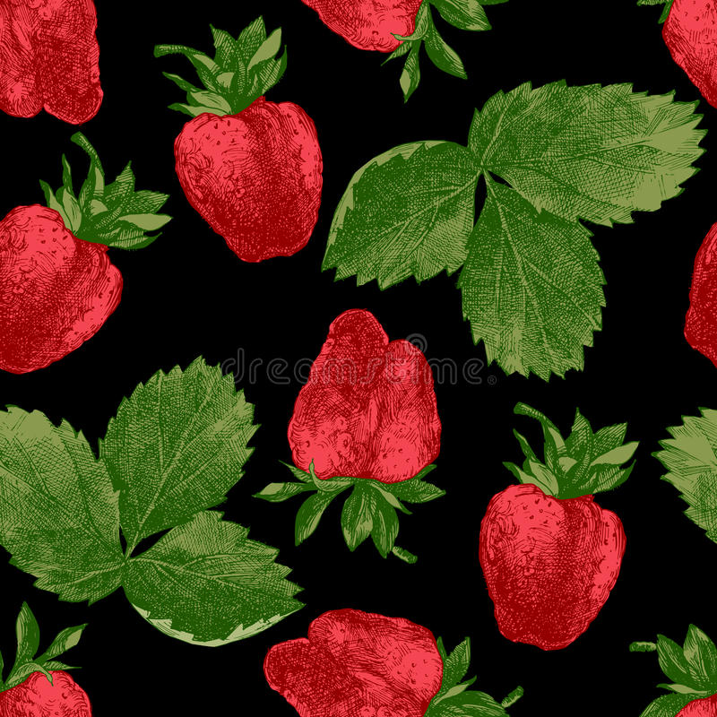Download 无缝的样式用新鲜的草莓 向量例证. 插画 包括有 食物, 有机, 工厂, 叶子, 图画, 照亮, 织品, 点心 - 72353729