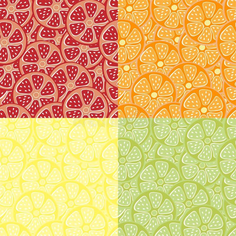 无缝的样式用桔子,葡萄柚,柠檬,石灰颜色柑橘水多的果子  设计的四个小组样式 皇族释放例证