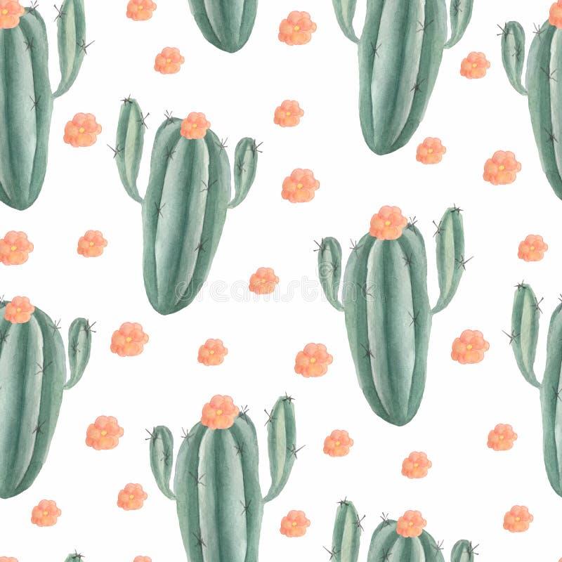 无缝的样式用水彩手画异乎寻常的仙人掌 热带多汁植物和绿色植物 库存例证