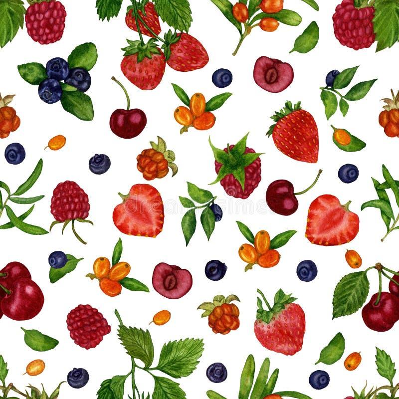 无缝的样式用莓果莓,野草莓,蓝莓,蓝莓,草莓,在一白色backgroud的海鼠李 库存例证