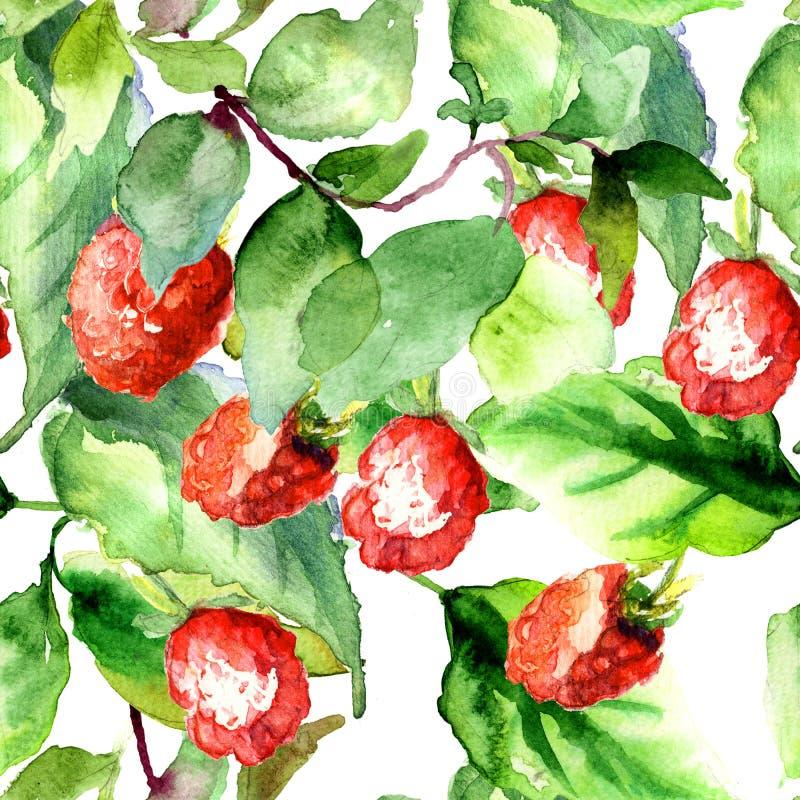 无缝的样式用莓 向量例证