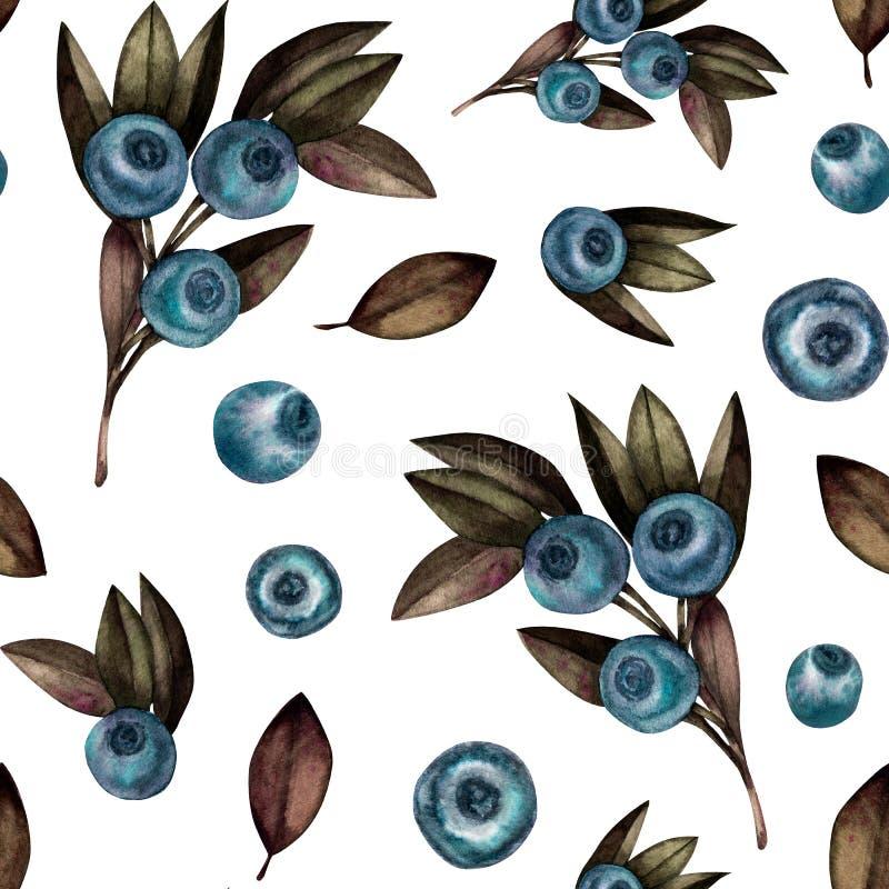 无缝的样式用蓝莓 库存例证