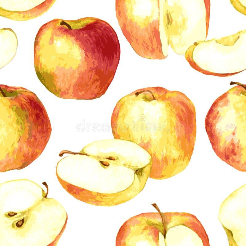 无缝的样式用画由水彩的苹果 向量例证