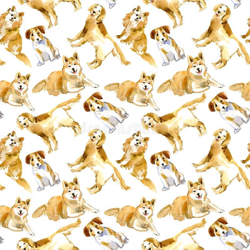 无缝的样式的狗 拉布拉多、杰克罗素狗和爱斯基摩 库存例证