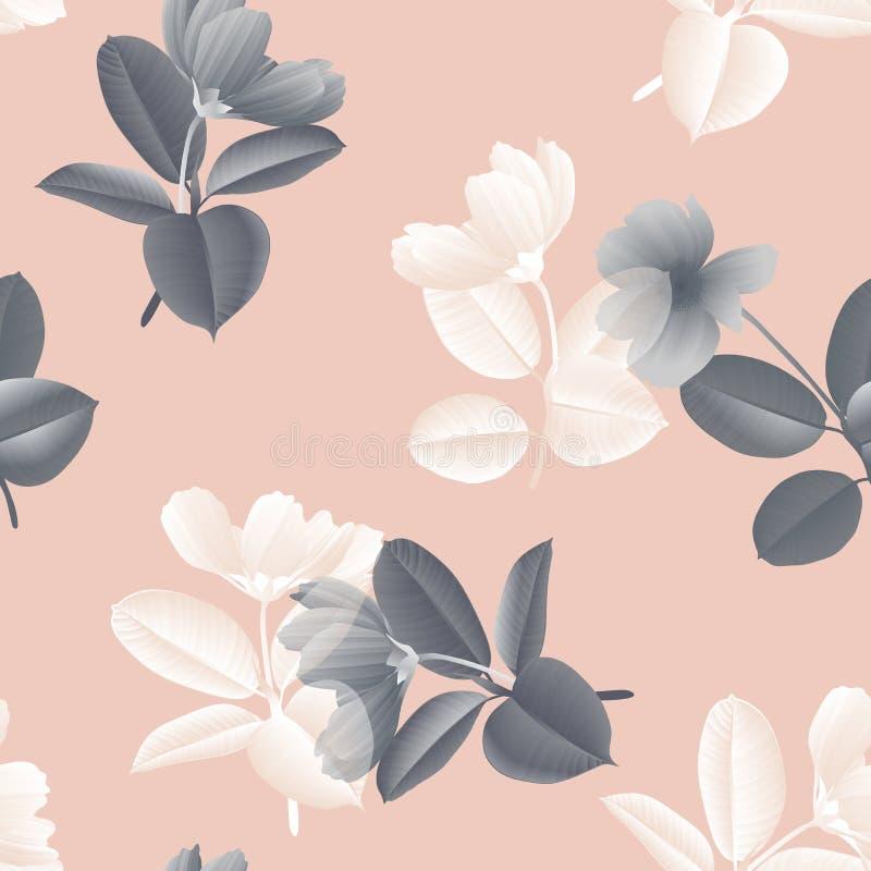 无缝的样式,与榕属Elastica的葡萄酒黑白波斯菊花在桃红色离开 库存例证