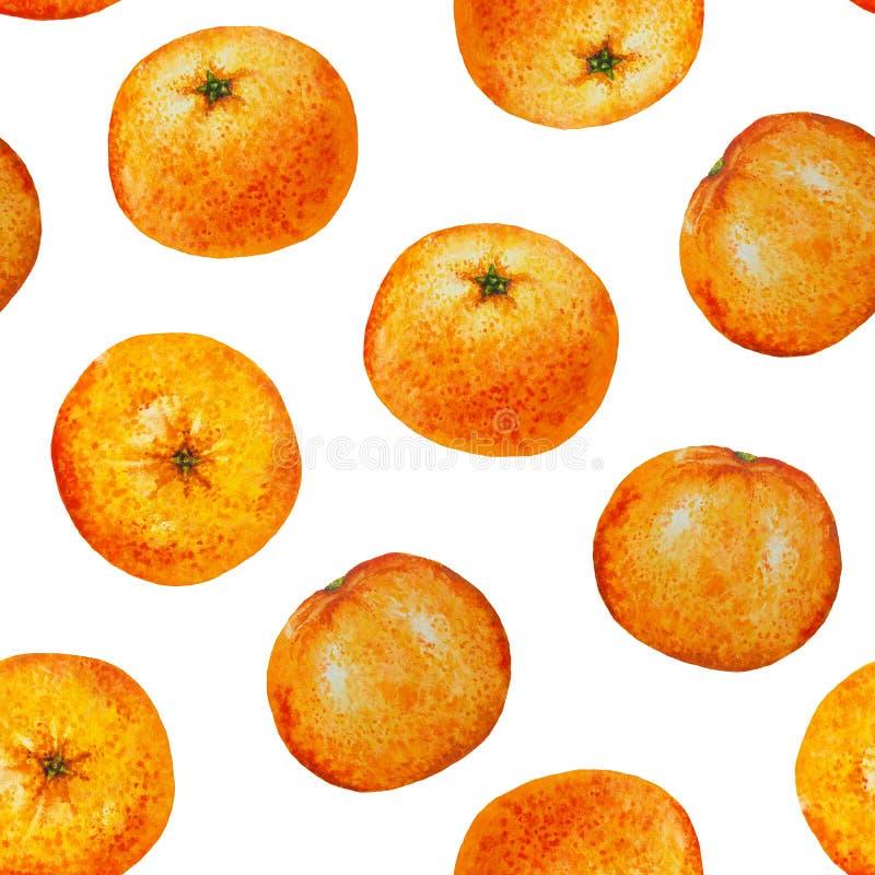 无缝的样式水彩桔子蜜桔 免版税库存照片
