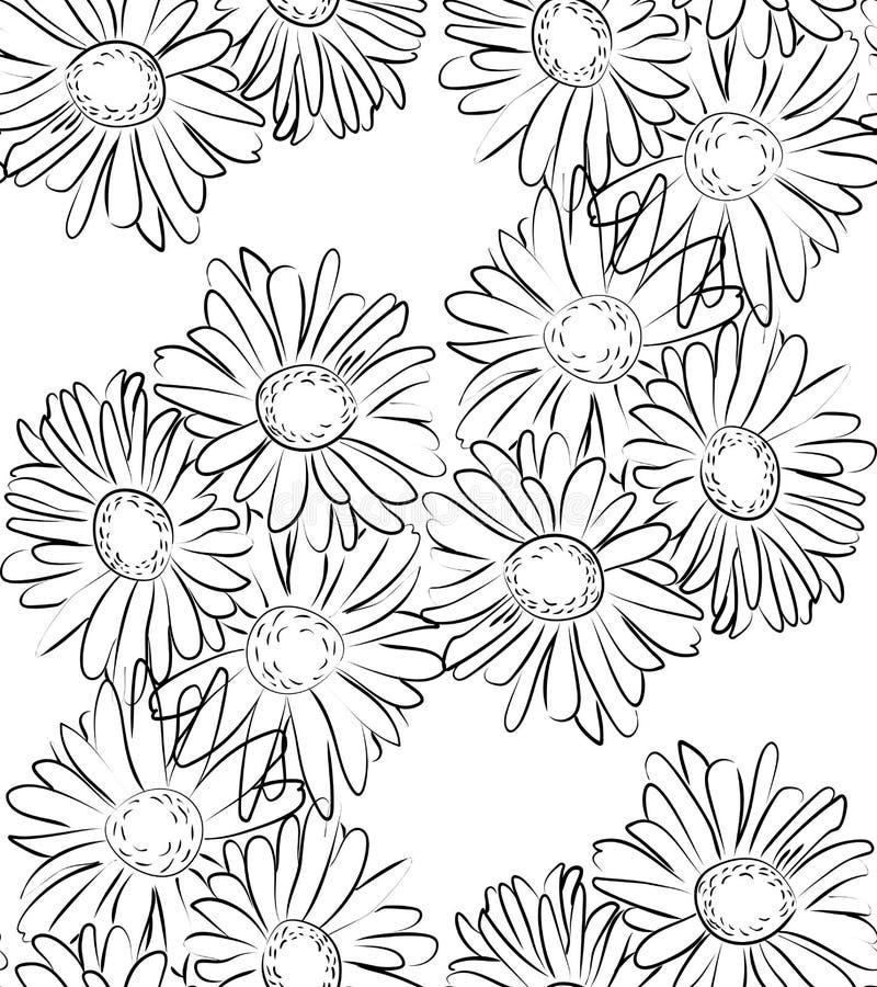 Download 无缝的样式黑白春黄菊花 向量例证. 插画 包括有 线路, 花束, 开花, 装饰, beauvoir, 华丽 - 72356892