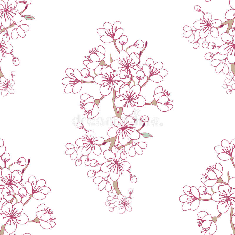 无缝的样式Sakura_3 库存例证