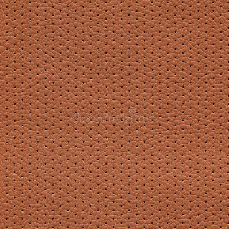 无缝的棕色穿孔的皮革纹理 库存图片