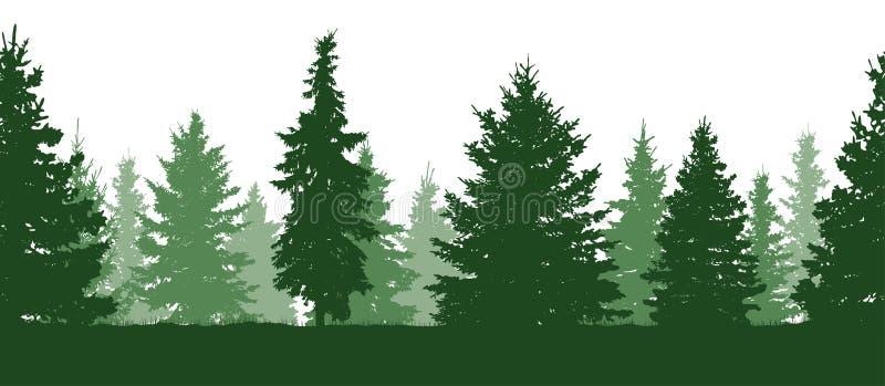 无缝的模式 森林,绿色冷杉木剪影 向量 向量例证