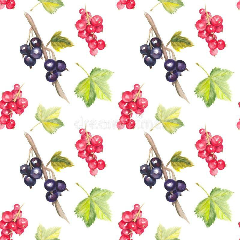 无缝的水彩样式用黑和红浆果 向量例证