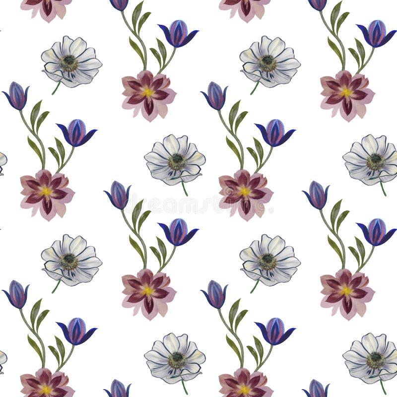 无缝的水彩花纹花样 在白色背景的手画花 不同颜色手画花  ? 皇族释放例证