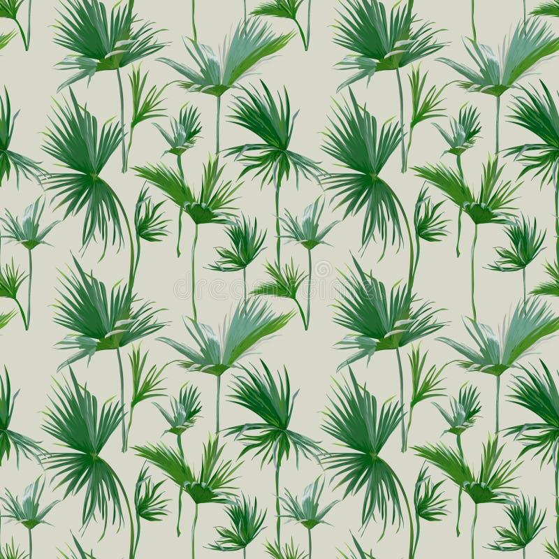 无缝的热带棕榈叶背景 异乎寻常的夏天纹理 向量例证