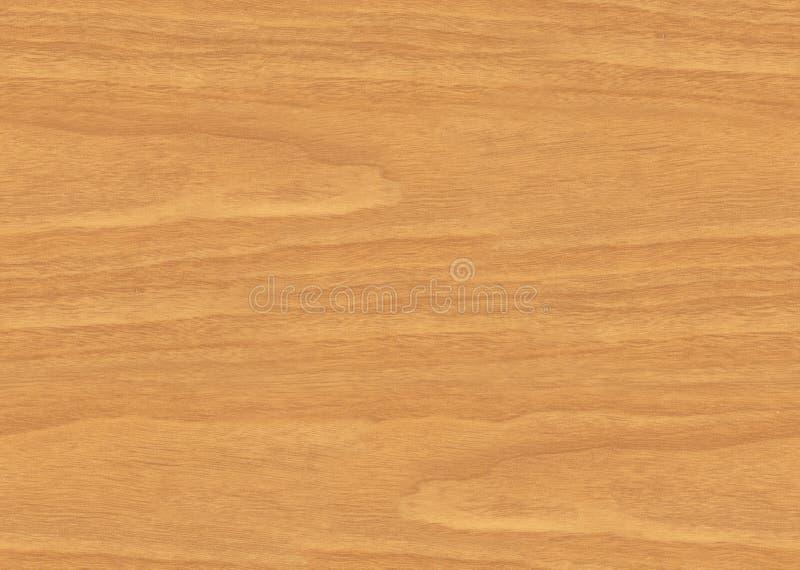 无缝的瓦片木头 库存照片