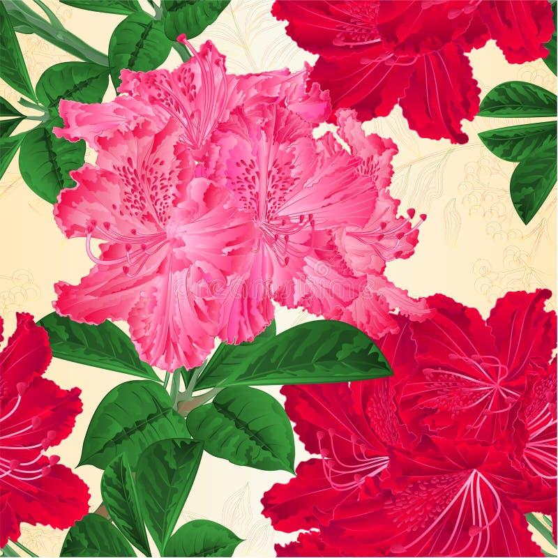 无缝的纹理开花红色和桃红色杜鹃花枝杈自然本底葡萄酒传染媒介例证 皇族释放例证