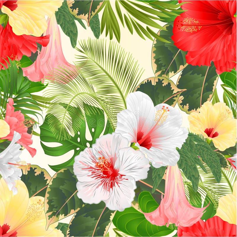 无缝的纹理热带花植物布置,与白色红色和黄色木槿和Brugmansia棕榈,爱树木的人vint 皇族释放例证