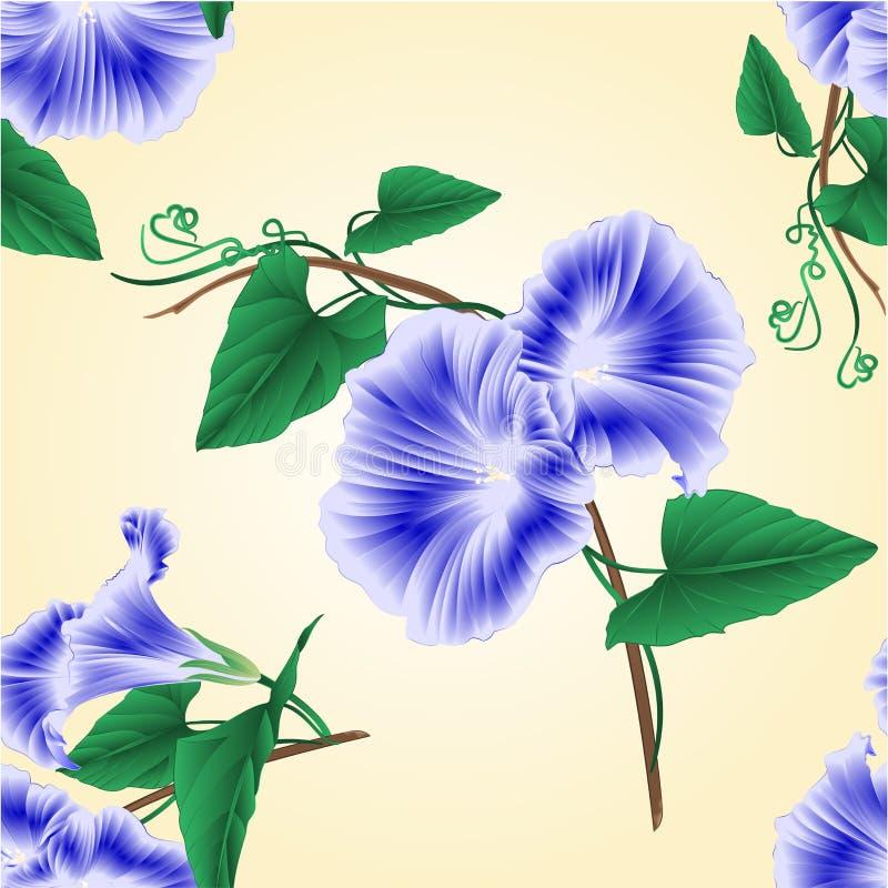 无缝的纹理牵牛花蓝色春天花传染媒介 库存例证