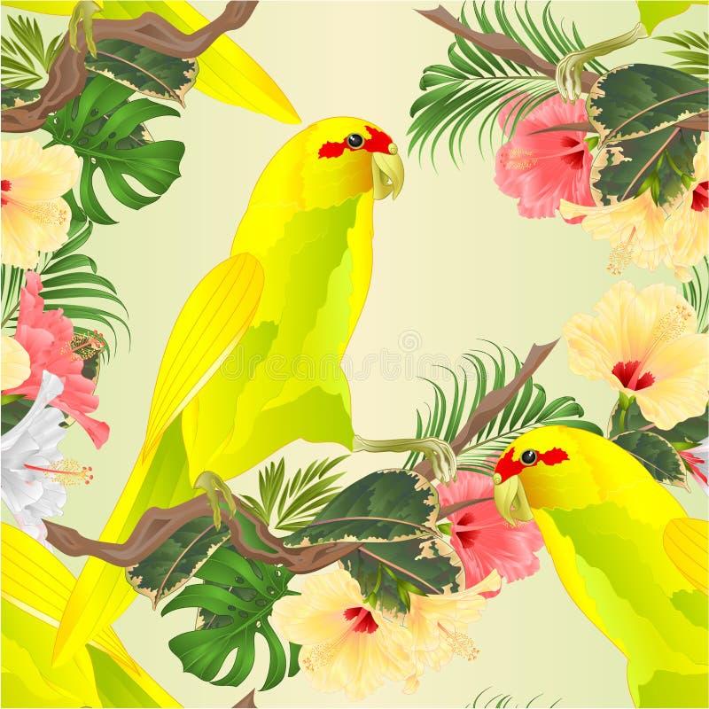 无缝的纹理鸟印度人Ringneck鹦鹉以在分支的黄色与热带花木槿,棕榈,爱树木的人水彩vin 向量例证