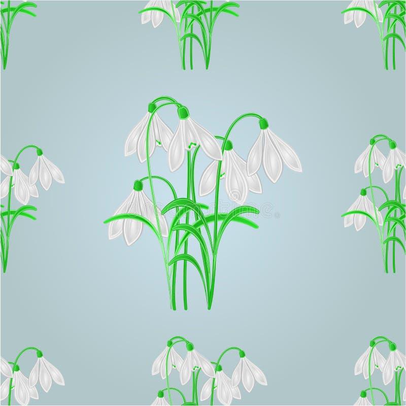 无缝的纹理snowdrops春天背景传染媒介 皇族释放例证