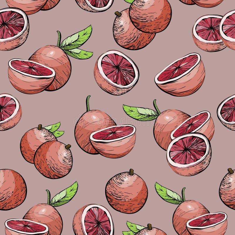 无缝的背景用柑桔水多的葡萄柚 皇族释放例证
