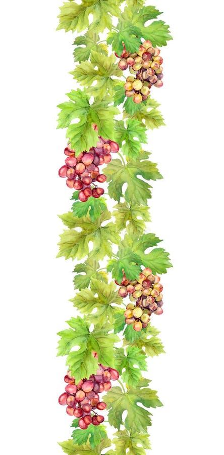 无缝的边界用葡萄和叶子 水彩框架 向量例证