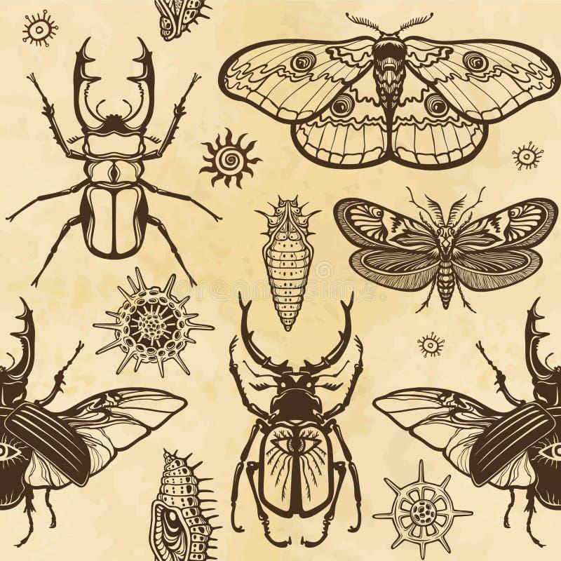 无缝的颜色样式:套昆虫,蝴蝶,臭虫,幼虫 背景-老纸的模仿 库存例证