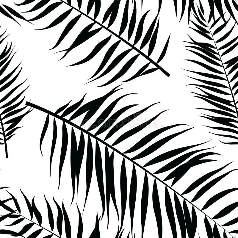 无缝的颜色棕榈叶样式 平的样式 黑色白色 皇族释放例证