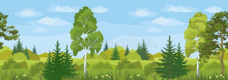无缝的水平的风景,夏天森林 皇族释放例证