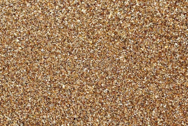 无缝粗糙的模式的沙子 免版税图库摄影