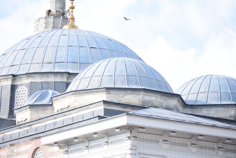 无背长椅清真寺尖塔视线内 免版税库存图片