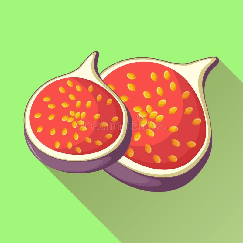 无花果与长的阴影的果子象 向量例证