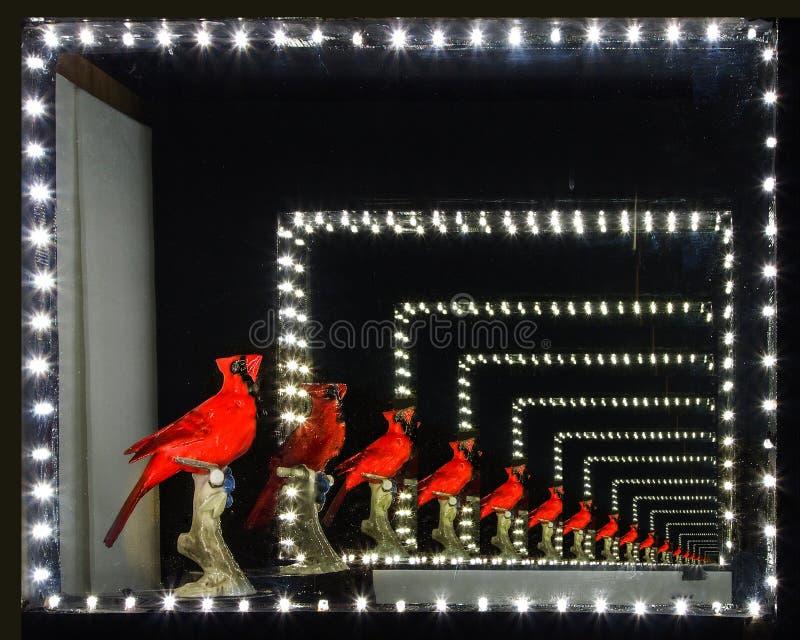 无限红色鸟 免版税库存图片