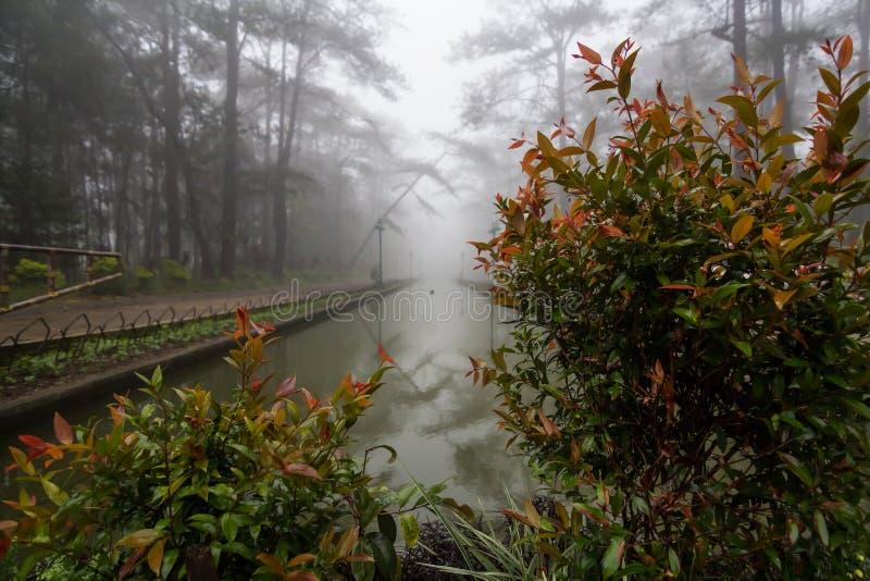 无限水池 图库摄影