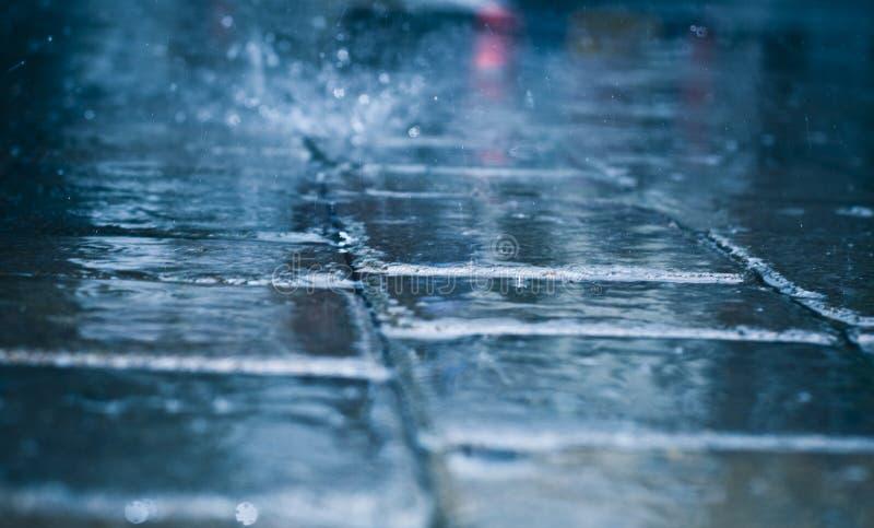 日下雨 免版税库存照片