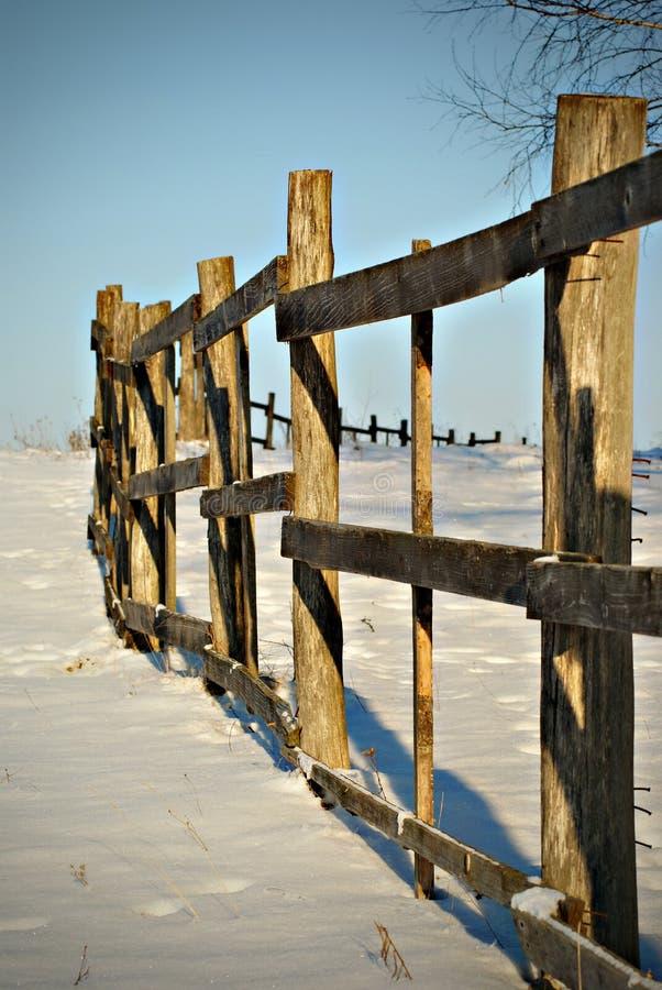 日冬天 库存图片