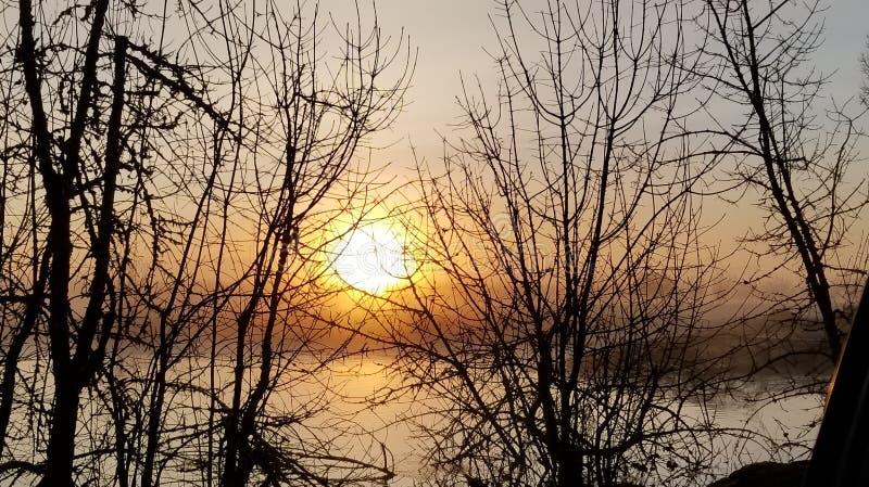 日出和雾在一个池塘在黎巴嫩俄勒冈附近 免版税库存图片