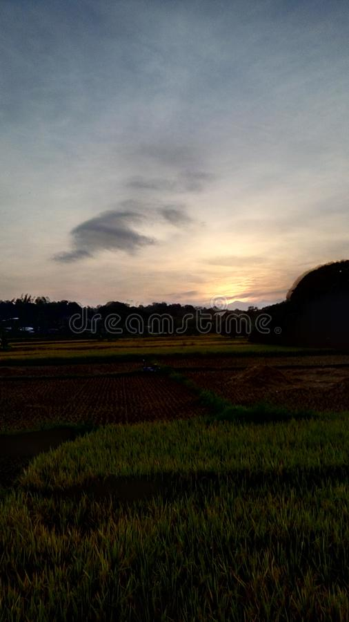 日出在农场 免版税图库摄影