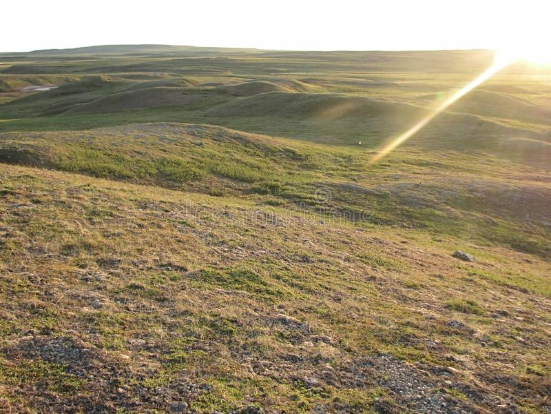 日出在夏天寒带草原 库存图片