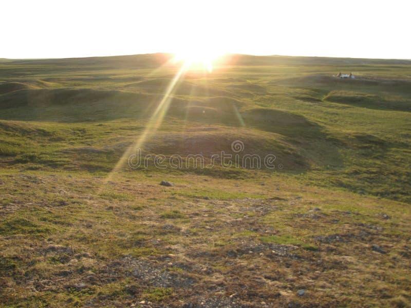 日出在夏天寒带草原 免版税库存照片