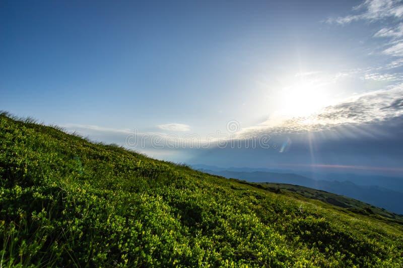 日出在山的夏天 免版税图库摄影