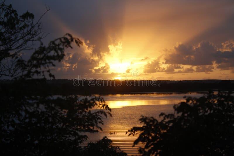 日出在有树的佐尾弗朗西斯科河 免版税库存照片