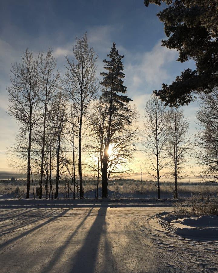 日出在芬兰 库存照片