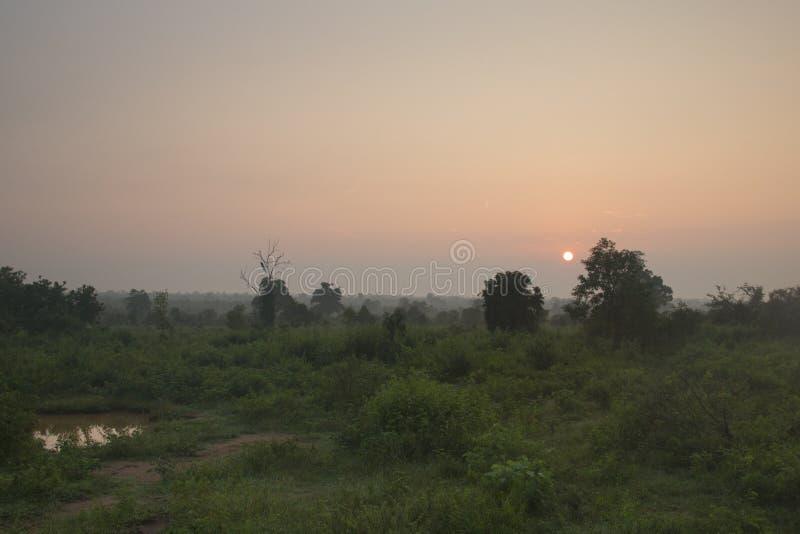 日出在Udawalawe,斯里兰卡 免版税库存图片