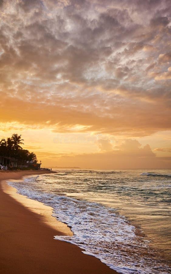 日出时的热带宁静海滩 免版税图库摄影