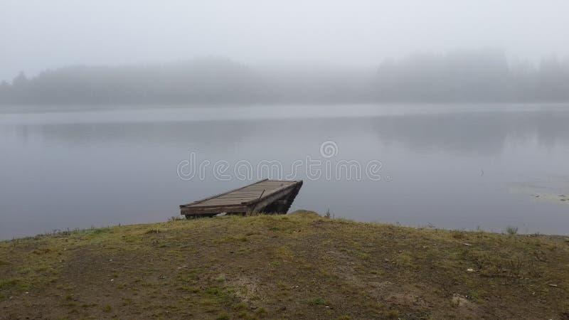 日出的森林湖在雾 免版税库存照片