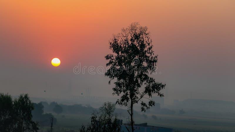 日出,巴鲁赫,古吉拉特,印度 库存图片