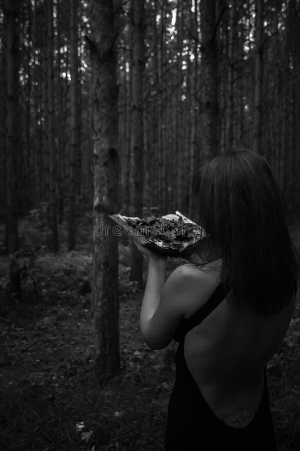 日历概念日期冷面万圣节愉快的藏品微型收割机说大镰刀身分 黑色的一个巫婆与巫婆 库存图片